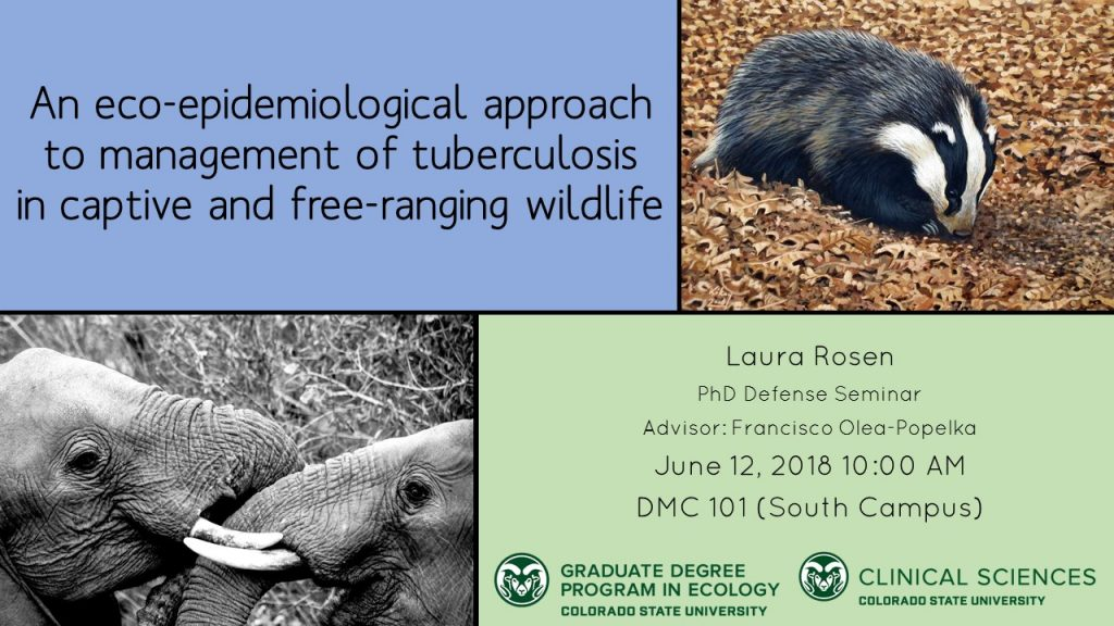 Defense Seminar Announcement Example. Title: An eco-epidemiological approach to management of tuberculosis in captive and free-ranging wildlife. Student: Laura Rosen. PhD Defense Seminar. Advisor: Francisco Olea-Popelka. June 12, 2018 10 am. DMC 101 (South Campus). Graduate Degree Program in Ecology Colorado State University word mark. Clinical Sciences, Colorado State University word mark. Picture of badger. Picture of two elephants.