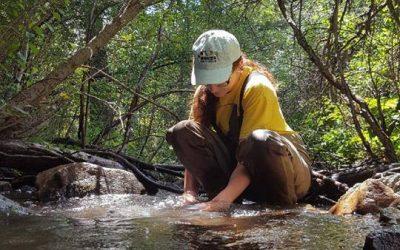 Whitney - river ecology